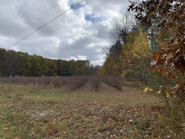 0 Butternut Drive, West Olive, MI 49460 (MLS #19054739) :: CENTURY 21 C. Howard