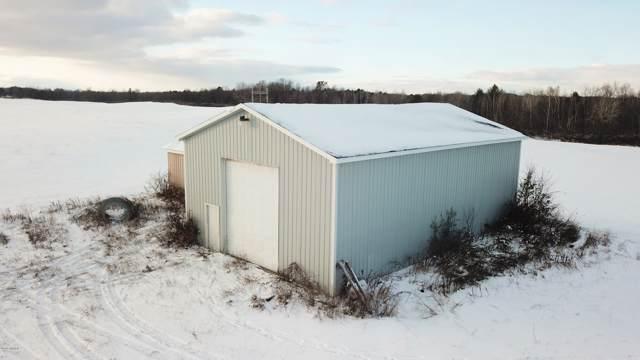 TBD 30th Ave, Remus, MI 49340 (MLS #19054763) :: Deb Stevenson Group - Greenridge Realty