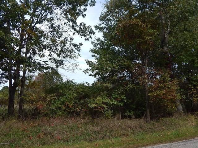 lot 4 Johnson Road, Three Rivers, MI 49093 (MLS #19054993) :: Matt Mulder Home Selling Team