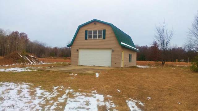 3424 E 56th Street, Chase, MI 49623 (MLS #19055324) :: JH Realty Partners