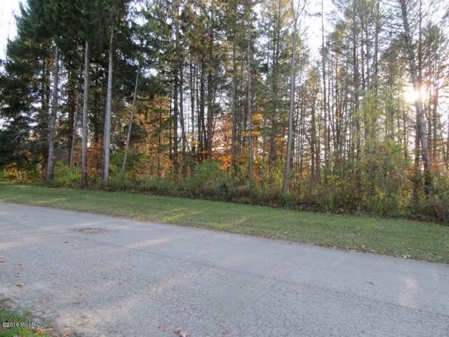 13700 Deer Creek Drive, South Haven, MI 49090 (MLS #19055498) :: JH Realty Partners