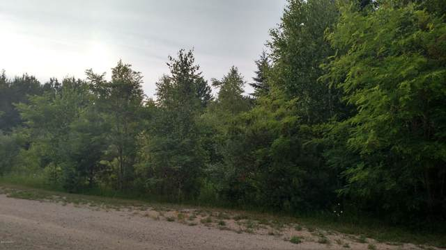 N White Birch Drive #39, Ludington, MI 49431 (MLS #19056706) :: Deb Stevenson Group - Greenridge Realty