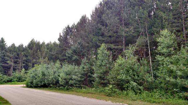 N White Birch Drive #41, Ludington, MI 49431 (MLS #19056711) :: Deb Stevenson Group - Greenridge Realty