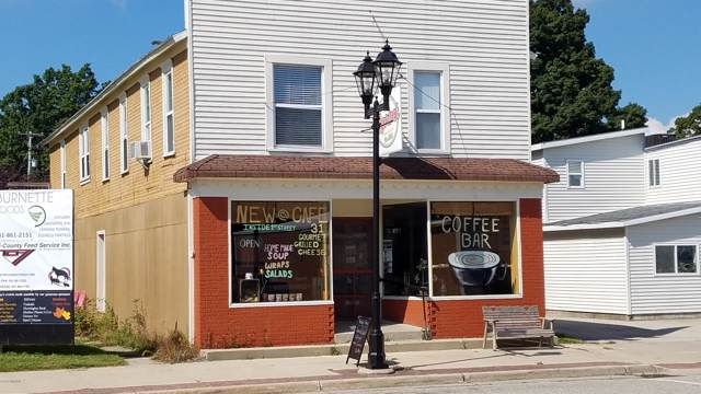 4733 1st Street, New Era, MI 49446 (MLS #19056718) :: Deb Stevenson Group - Greenridge Realty