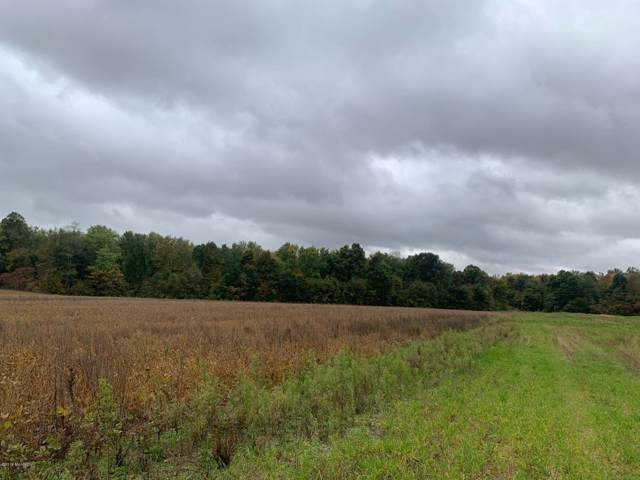 V/L Marshall Road, Coldwater, MI 49036 (MLS #19057123) :: JH Realty Partners