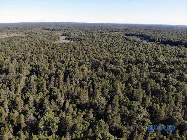 193 Acre Forest, Baldwin, MI 49304 (MLS #20000533) :: CENTURY 21 C. Howard