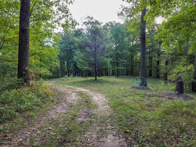 60 Acres 49th Street, Pullman, MI 49450 (MLS #20000761) :: Deb Stevenson Group - Greenridge Realty