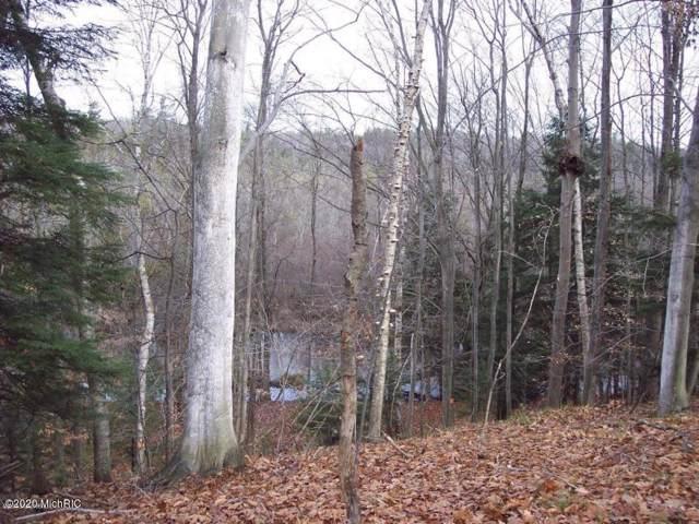 0 Jefferson Road, Pentwater, MI 49449 (MLS #20000804) :: Deb Stevenson Group - Greenridge Realty