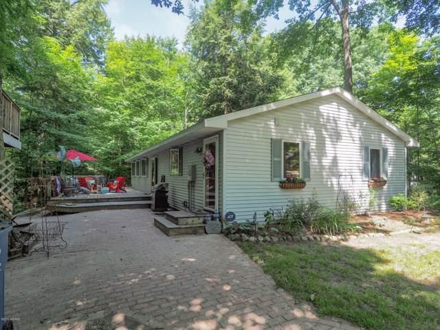 7118 Maple Avenue, South Haven, MI 49090 (MLS #20000949) :: Deb Stevenson Group - Greenridge Realty