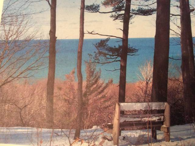 Lot 19 Sable Point Drive, Shelby, MI 49455 (MLS #20001601) :: JH Realty Partners