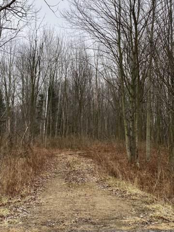 0 Lakeside Road, Three Oaks, MI 49128 (MLS #20001876) :: JH Realty Partners