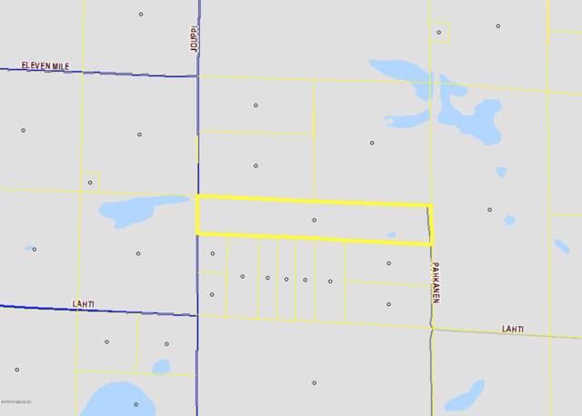 24.94 ac Jouppi, Bear Lake, MI 49614 (MLS #20001944) :: CENTURY 21 C. Howard