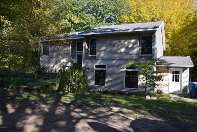 12816 112th Avenue, Grand Haven, MI 49417 (MLS #20002108) :: Matt Mulder Home Selling Team