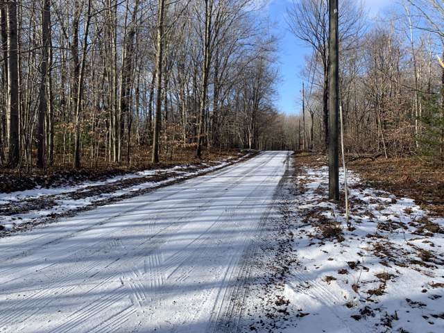 Lot 27 Mears Road, Ludington, MI 49431 (MLS #20002959) :: Deb Stevenson Group - Greenridge Realty
