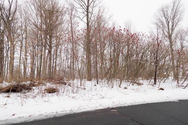6158 Deer Run Road, Schoolcraft, MI 49087 (MLS #20003055) :: CENTURY 21 C. Howard