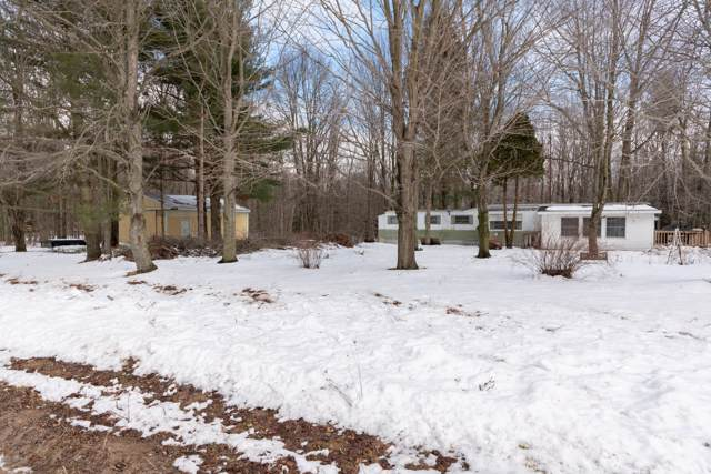 8264 S 44th Avenue, Montague, MI 49437 (MLS #20003291) :: JH Realty Partners
