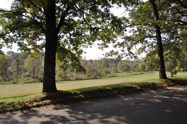 Par 3 N State Road, Belding, MI 48809 (MLS #20004103) :: CENTURY 21 C. Howard