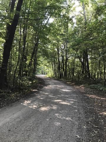 Coopers Landing Drive, Quincy, MI 49082 (MLS #20004117) :: Matt Mulder Home Selling Team