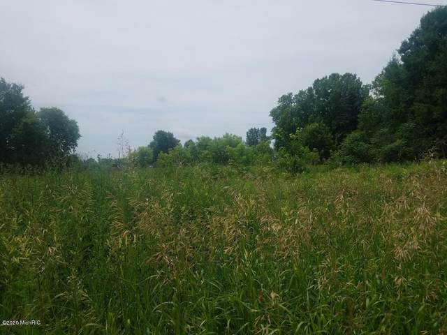 164 E Peck Lake Road, Ionia, MI 48846 (MLS #20004265) :: Jennifer Lane-Alwan