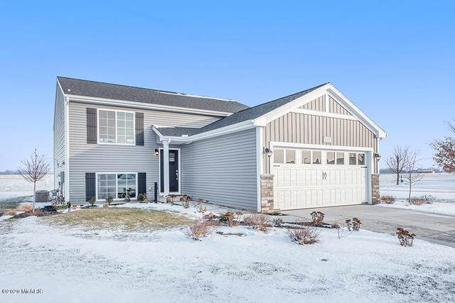 1641 Southpointe Trail, Otsego, MI 49078 (MLS #20004337) :: Matt Mulder Home Selling Team