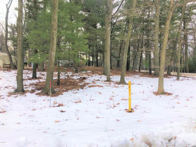 Lot 144 Easy Street, Mears, MI 49436 (MLS #20004422) :: Deb Stevenson Group - Greenridge Realty