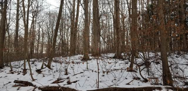 Lot 31 Sable Point Drive, Shelby, MI 49455 (MLS #20004595) :: JH Realty Partners