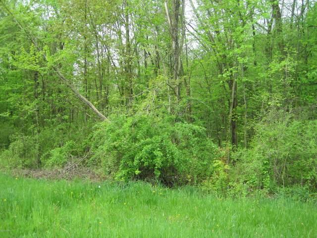 W Pine Street, Bloomingdale, MI 49026 (MLS #20004613) :: Deb Stevenson Group - Greenridge Realty