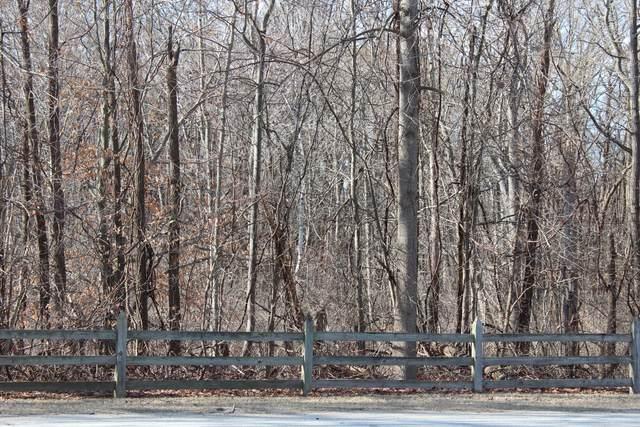 0-Lot 52 & Lot 56 Wildwood, Bridgman, MI 49106 (MLS #20004716) :: Deb Stevenson Group - Greenridge Realty