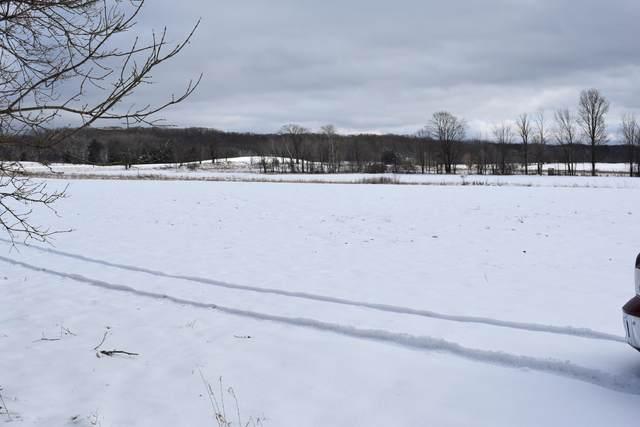 0 S Branch Road, Branch, MI 49402 (MLS #20005091) :: Deb Stevenson Group - Greenridge Realty