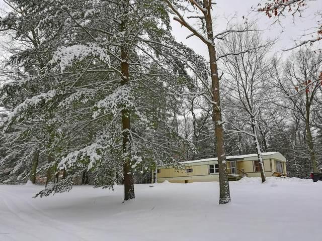 653 Home Acres Street, Brohman, MI 49312 (MLS #20005133) :: CENTURY 21 C. Howard