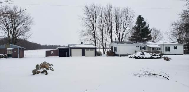 1289 W Grand River Avenue, Ionia, MI 48846 (MLS #20005663) :: JH Realty Partners