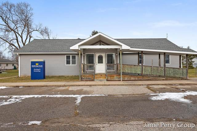 123 E Linden Street, Carson City, MI 48811 (MLS #20005991) :: Ron Ekema Team
