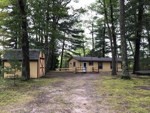 9684 W Harper Drive, Irons, MI 49644 (MLS #20005999) :: Deb Stevenson Group - Greenridge Realty