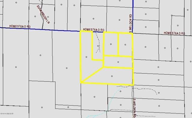 0000 Homestead Road, Beulah, MI 49617 (MLS #20006046) :: Deb Stevenson Group - Greenridge Realty