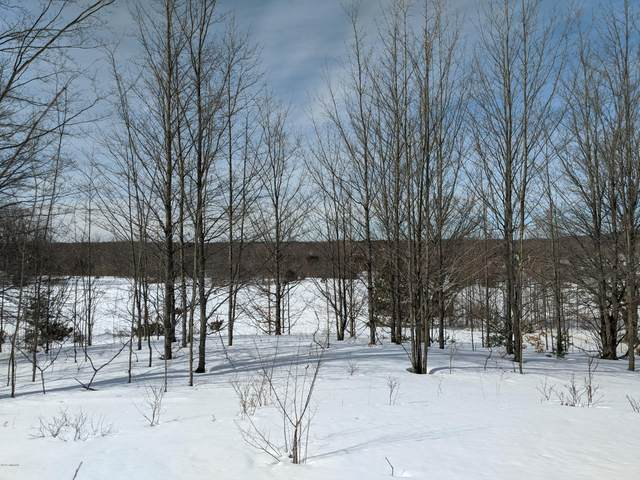 Glovers Lake Road, Bear Lake, MI 49614 (MLS #20006777) :: Jennifer Lane-Alwan
