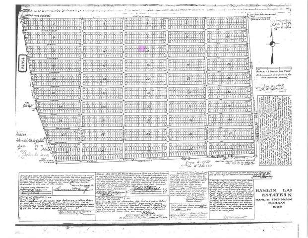 Birch Street Lot 10, 11, 12 , Ludington, MI 49431 (MLS #20006958) :: Deb Stevenson Group - Greenridge Realty