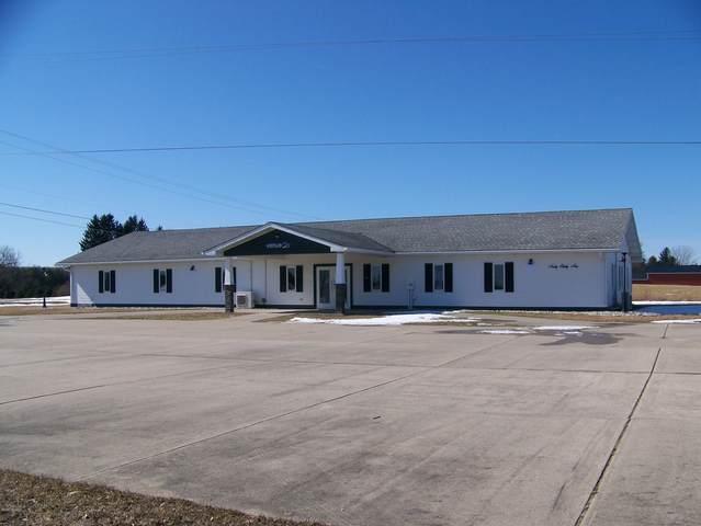 9039 20th Avenue, Remus, MI 49340 (MLS #20008798) :: Deb Stevenson Group - Greenridge Realty