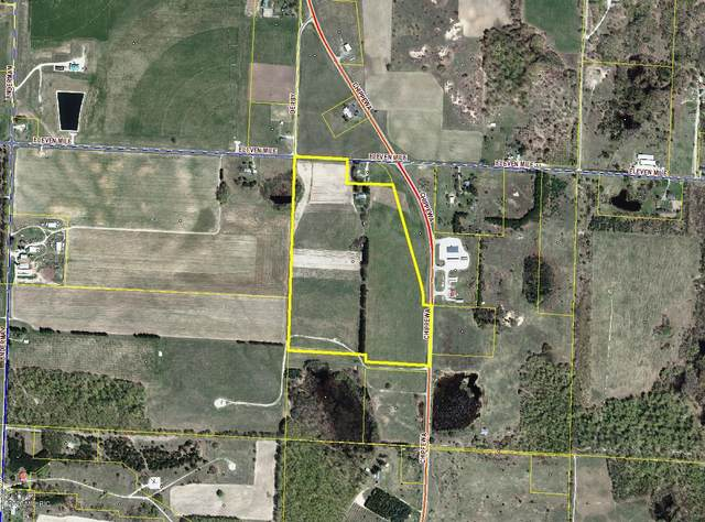 7563 Eleven Mile Road, Bear Lake, MI 49614 (MLS #20009094) :: Matt Mulder Home Selling Team