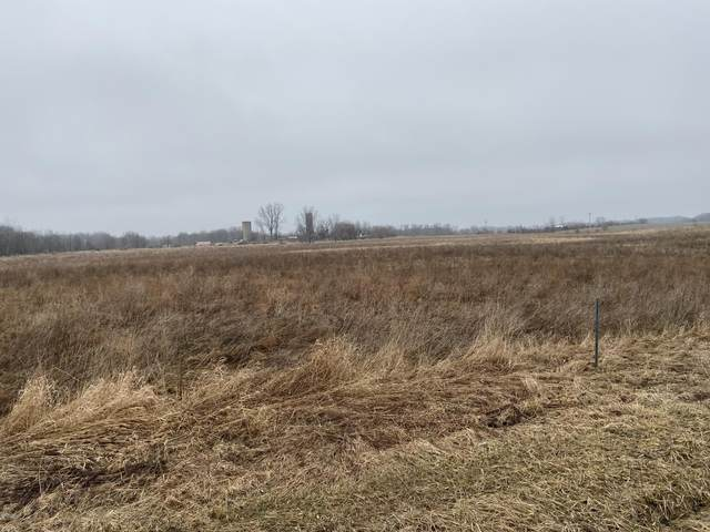 40th Street, Bloomingdale, MI 49026 (MLS #20010906) :: JH Realty Partners