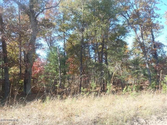 E Oakwood Trail, Reed City, MI 49677 (MLS #20011585) :: CENTURY 21 C. Howard
