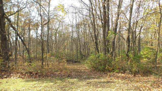 1 M 205, Edwardsburg, MI 49112 (MLS #20011690) :: JH Realty Partners