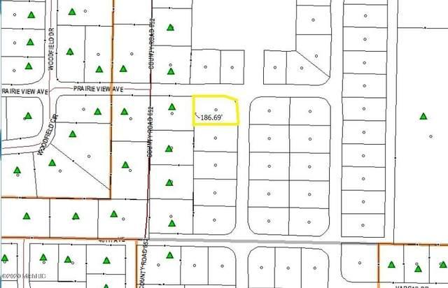 47442 Silver Oaks West Boulevard, Mattawan, MI 49071 (MLS #20011778) :: Matt Mulder Home Selling Team