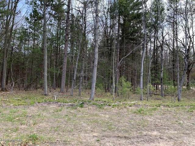 6532 W Juliana Drive Lot 12, Ludington, MI 49431 (MLS #20011801) :: Deb Stevenson Group - Greenridge Realty