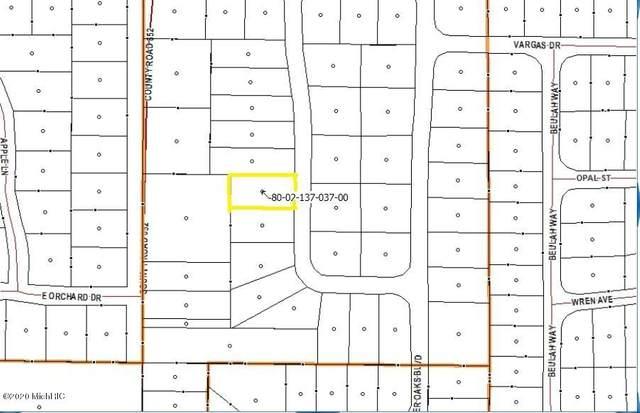 48656 Silver Oaks W Boulevard, Mattawan, MI 49071 (MLS #20011856) :: Matt Mulder Home Selling Team