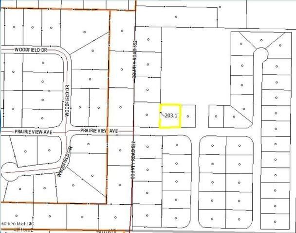25376 Prairie View Avenue, Mattawan, MI 49071 (MLS #20011912) :: Ron Ekema Team