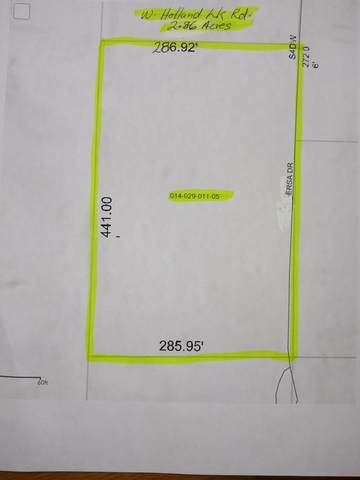 W Holland Lake Road Parcel B, Greenville, MI 48838 (MLS #20012614) :: Jennifer Lane-Alwan