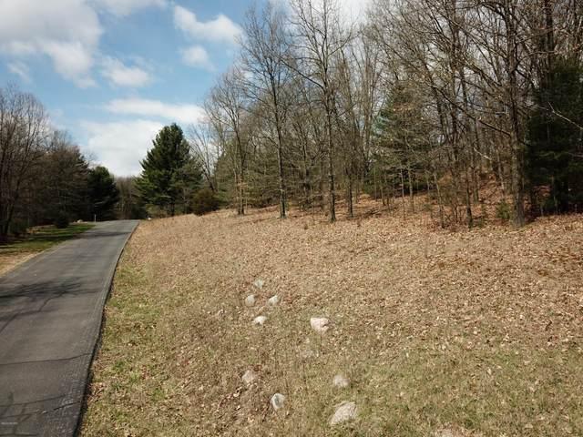 13567 Hill Country Road, Lowell, MI 49331 (MLS #20013186) :: Deb Stevenson Group - Greenridge Realty