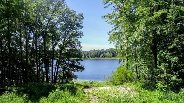 25808 Wise Road, Gobles, MI 49055 (MLS #20013773) :: JH Realty Partners