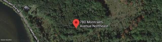 780 Montcalm Avenue NE, Lowell, MI 49331 (MLS #20013887) :: JH Realty Partners