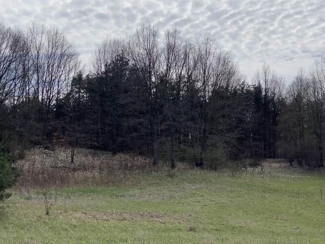 Lot-I Meadow View Lane, Hart, MI 49420 (MLS #20014558) :: Deb Stevenson Group - Greenridge Realty